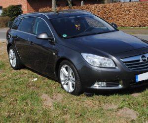 Покупка, внос на кола от Германия - Opel Insignia 2.0 CDTI Sports Tourer Sport 2009 160hp (1)